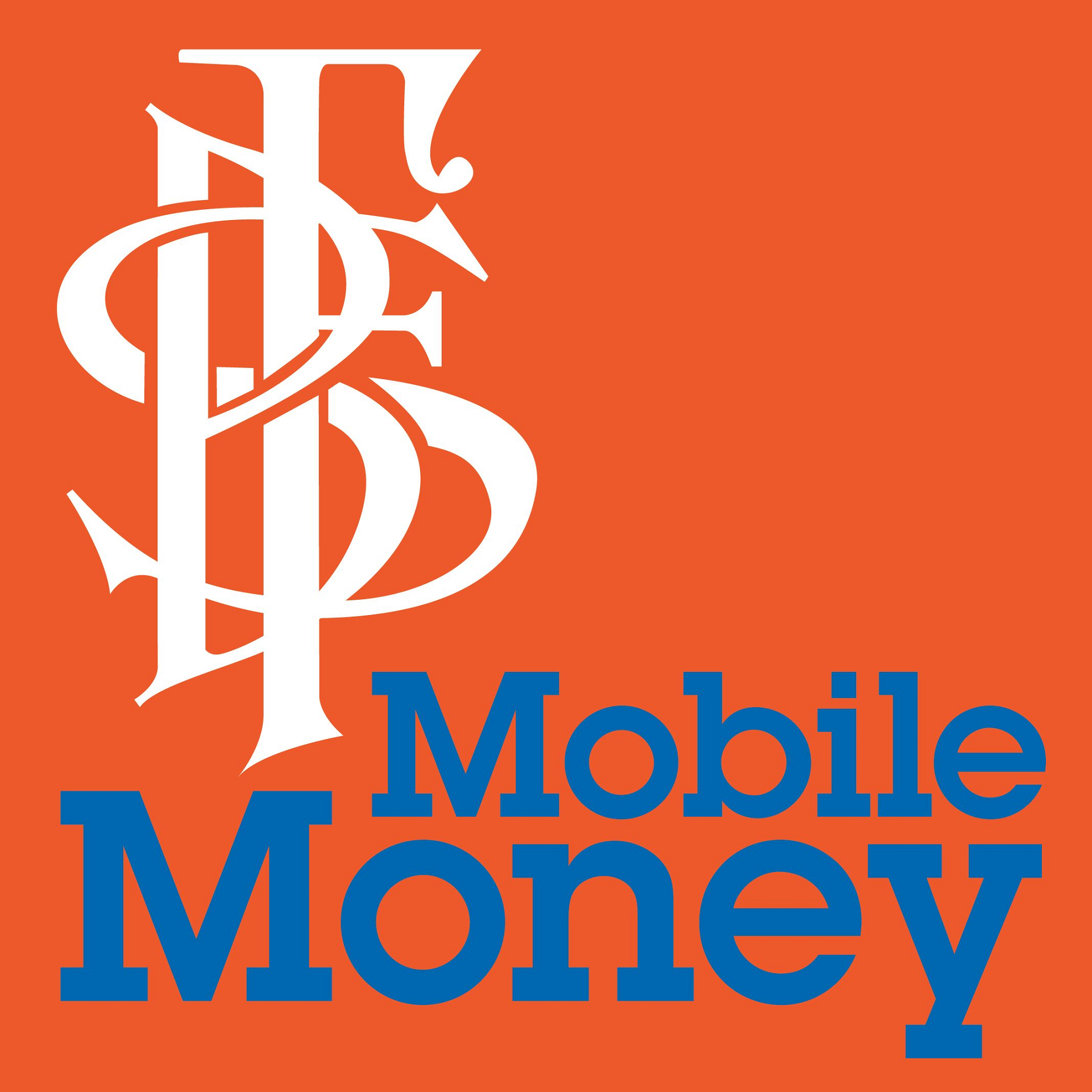Mobile Money App Icon
